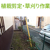 植栽剪定・草刈り作業